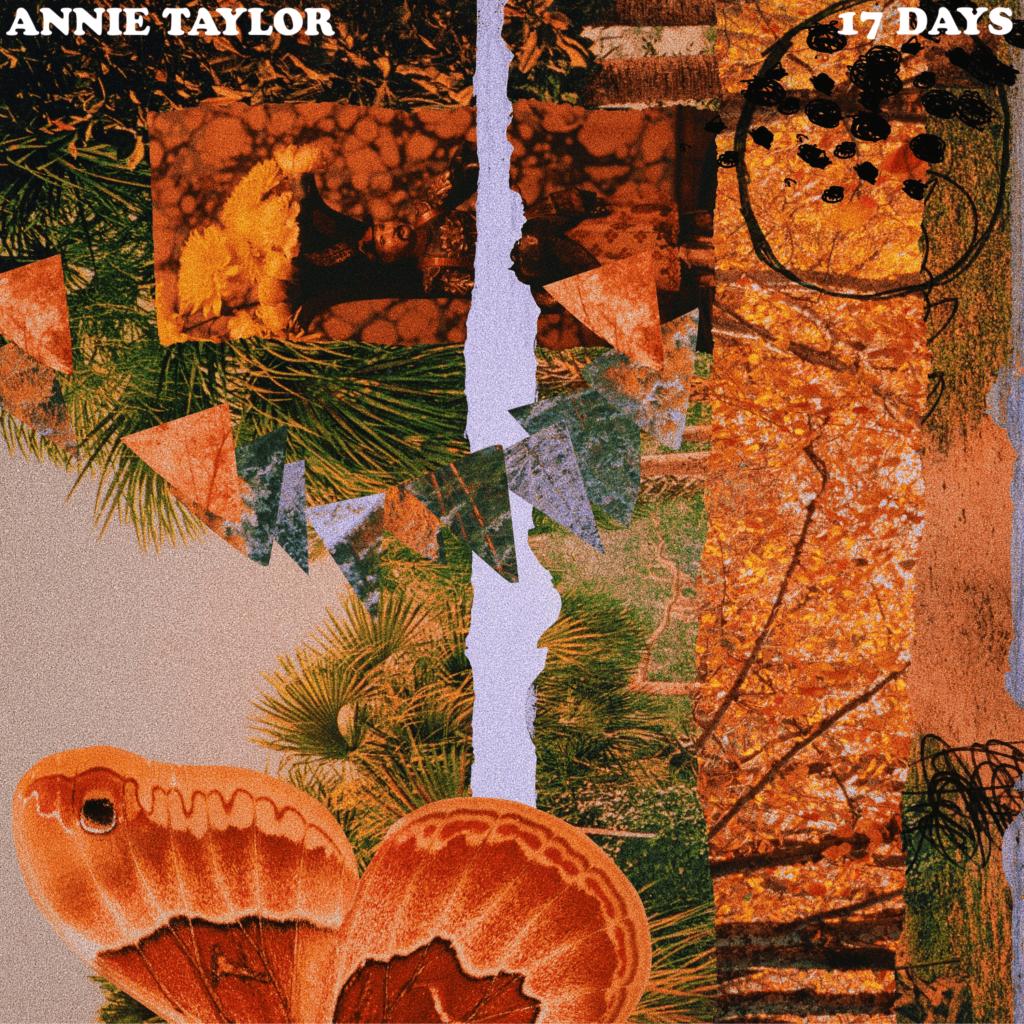 Annie Taylor, 17 Days, Grunge, Darkpop, Psychedelic Pop, Deutsch, Indie Musik Magazin, Pickymagazine, Picky Magazin, Indie, Musik, Blog, Online, Cover