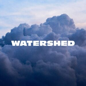 Watershed, Giant Rooks, Pickymagazine, Pickymagazin, Indie, Musik, Blog, Blogger, Online, Indie Musik Magazin, Review, Single